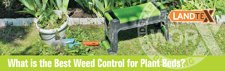 What is the Best Weed Control for Plant Beds?