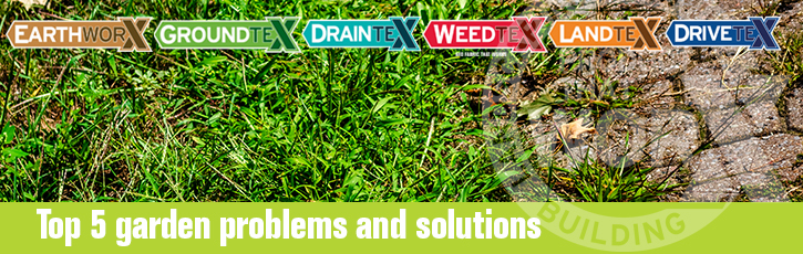 Top 5 garden problems and solutions